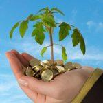 Что такое предпринимательство и бизнес